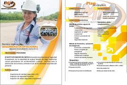 plan de estudios Seguridad Ocupacional