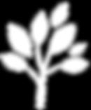 Tree%20Black_edited.png
