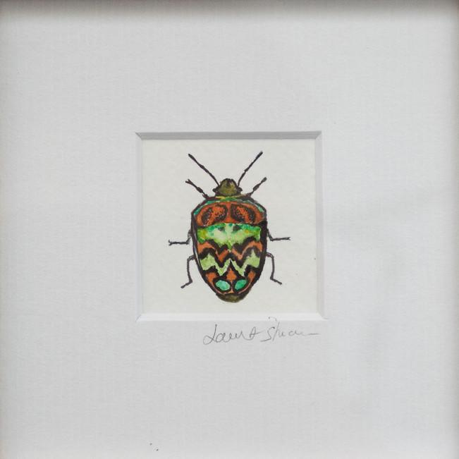 Wall bug 4
