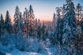 Hiver en Norvège