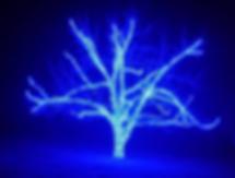 Christmas lights, blue tree