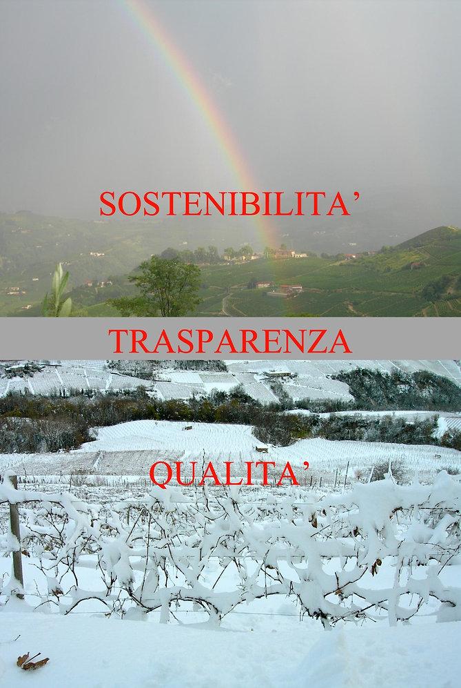 Viticoltura attenta, viticoltura sostenibile, passion e ragione,
