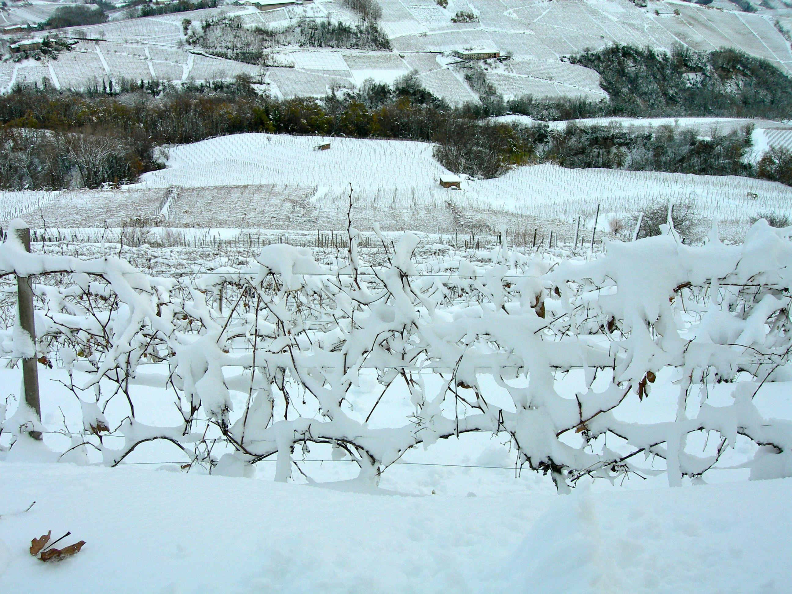 neve: riserva idrica