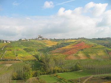 Viticoltura attenta, viticoltura sostenibile, passione e ragione, sostenibile, preservazione ambiente, paesaggio