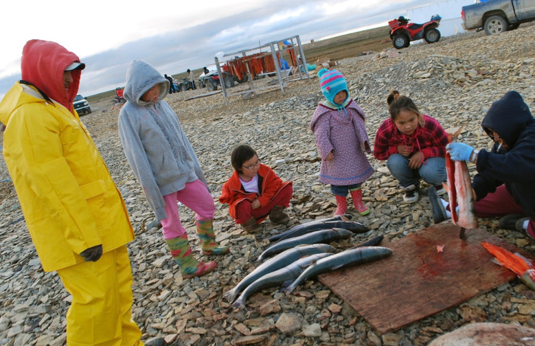 Annie Atighioyak teaches a group of children to fillet harvested fish. Photo by Brendan Griebel.
