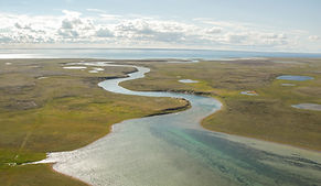 Air photo of the Iqaluktuuq region, between Ferguson Lake and Wellington Bay. Photo by Max