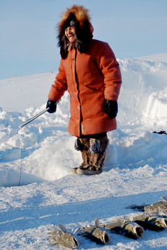 Mary Kaniak uses a jigging rod to catch cod beneath the sea ice. Photo by Brendan Griebel.