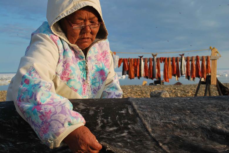 Anna Nagohaloak sews a seal skin cover onto a kayak frame. Photo by Brendan Griebel.