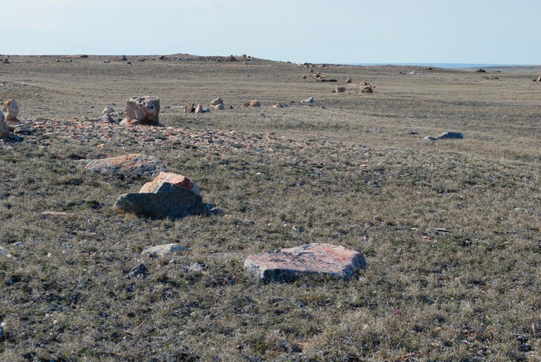 A historical inuksuit (stacked stone) line can be still be seen traversing the landscape at Iqaluktuuq. These lines were once used to herd caribou into strategic hunting places. Photo by Brendan Griebel.