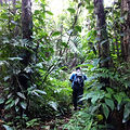 Hiking Tours in Grenada