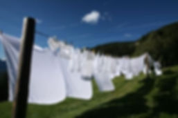 Henry Safari Laundry