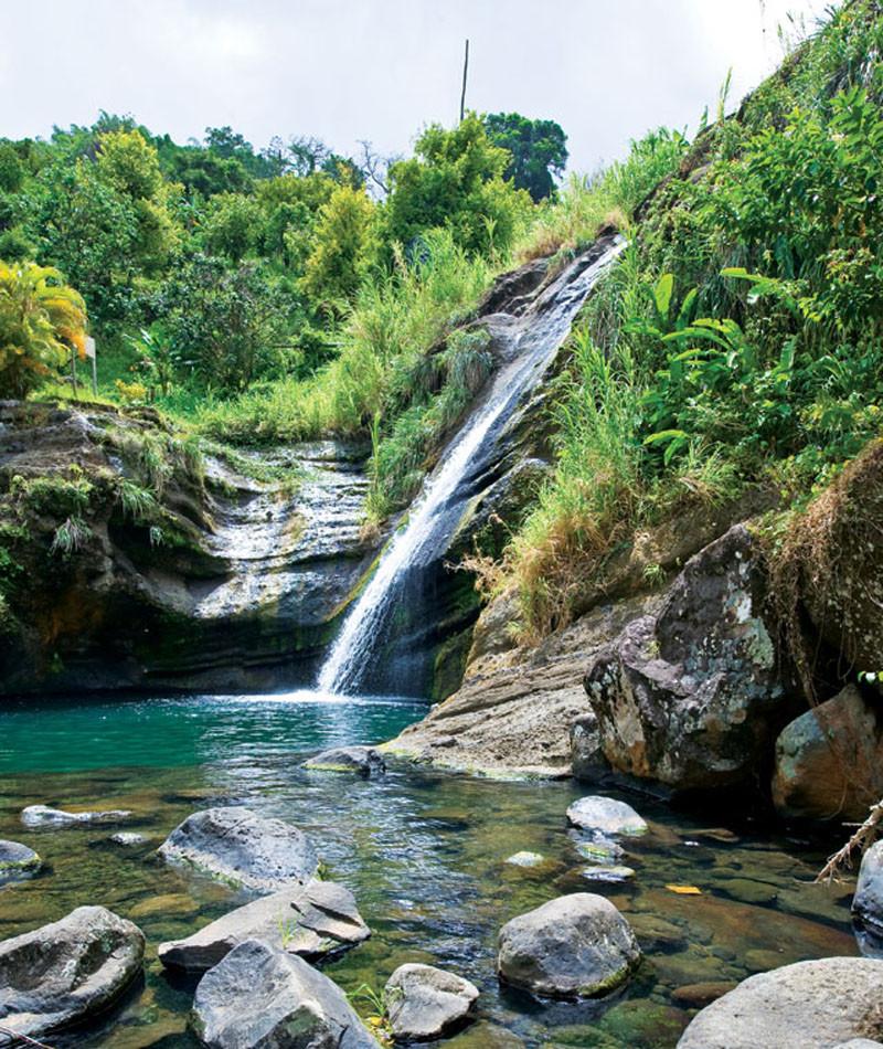 Grenada Customs Tours