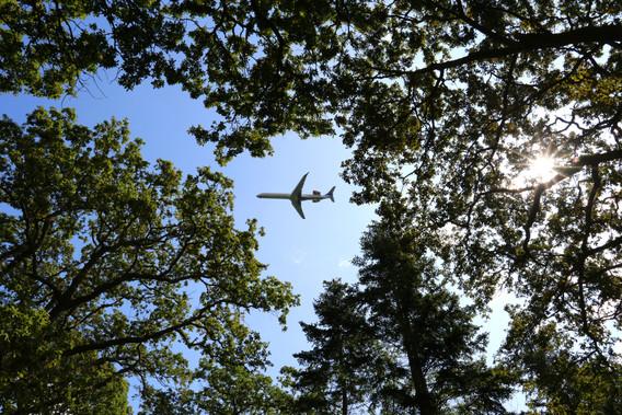 Fly over Kongelunden