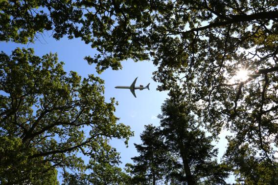 Fly på vej mod lufthavnen over Kongelunden