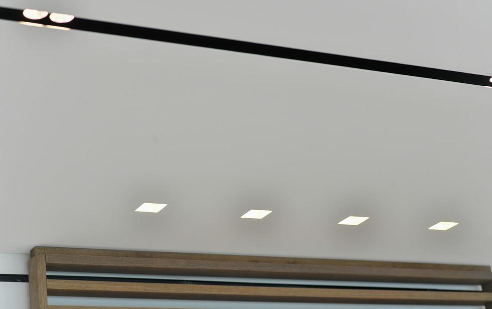 Park tsameret, lighting detail