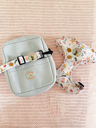I can't go to the beach, i'm sick - walking bag