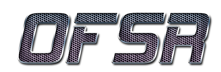 OFSR MESH.png