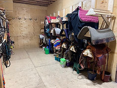 Tack Room Saddles.jpg