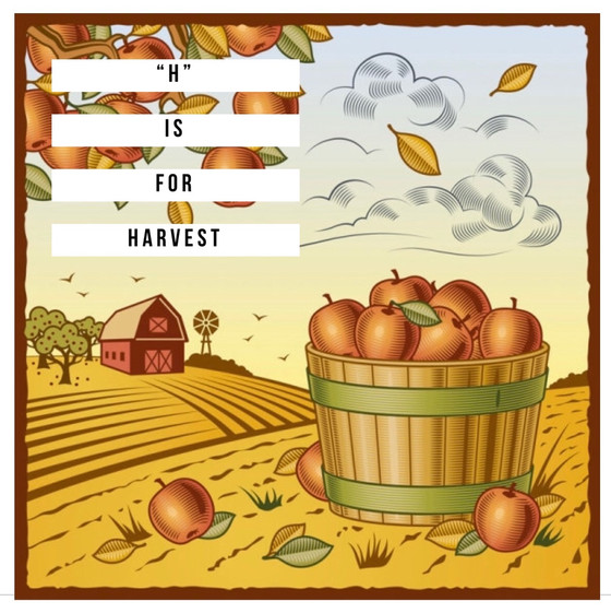 """H"" is for Harvest"