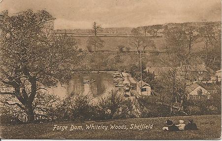 Forge Dam whiteley woods