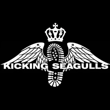 Kicking Seagulls