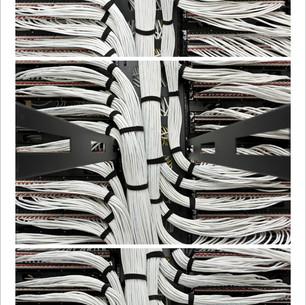 Network White, 2013.jpg