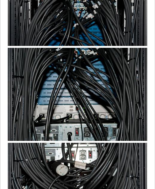 Network Black, 2013