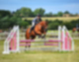 Equine physiotherapy North Yorkshire