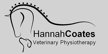 Hannah Coates Veterinary Physiotherapy North Yorkshire