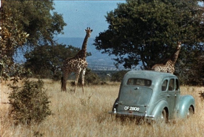 12.South Africa.1956. Anne's car Camelo.