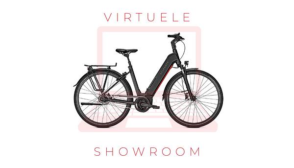 virtuele showroom.png