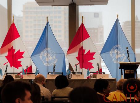 UNA-Canada & the Balsillie School of International Affairs Launch an International Issues Speake