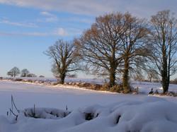 Tregagle in winter