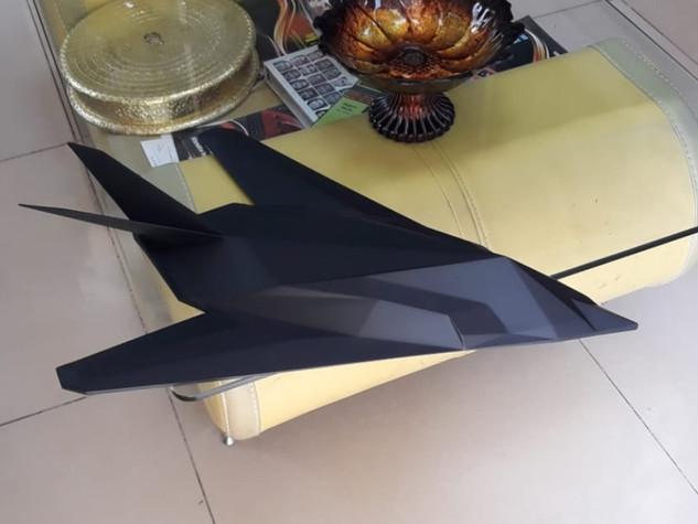 f117 art model