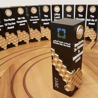Trophies Designed & 3D Printed
