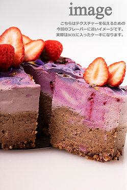 SUNPEDAL NUTTY CHEESY CAKE+NUTTY CHOCOLATE