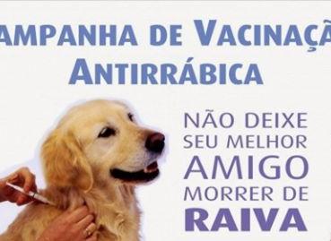 Prefeitura de Águas Lindas iniciará a Campanha de Vacinação Antirrábica de 2017 na próxima semana