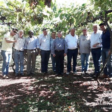 Prefeitura de Alexânia apoia a implantação de vinícolas para fomentar a economia local