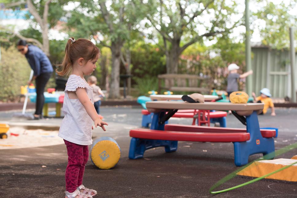 Fun at Parks