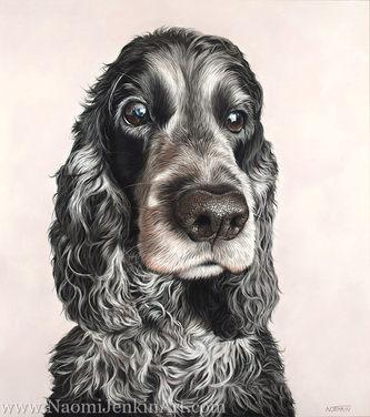 Cocker Spaniel dog portrait
