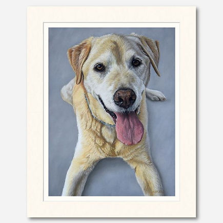 Giclee print of Golden Labrador dog portrait.