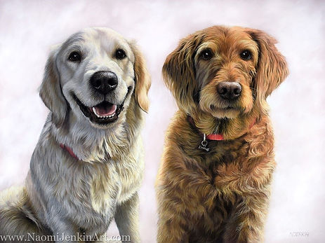 Pastel dog portrait of Beau, the Golden Retriever puppy, and Honey, a Labradoodle. Drawn by pet portrait artist Naomi Jenkin.