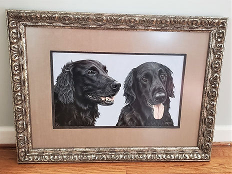 Framed dog portrait of Bama and Indy, the Flat-Coated Retrievers. Hand drawn in pastels by international pet portrait artist Naomi Jenkin.