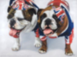 Dog portrait of Molly and Mabel, English Bulldogs. Hand drawn in pastels by Naomi Jenkin Art.