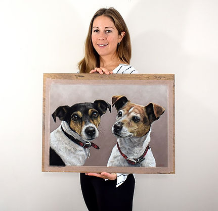Dog portrait of Jack Russells by pet portrait artist Naomi Jenkin.
