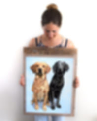 Pet portrait artist Naomi Jenkin with pastel portrait of Red the Fox Red Labrador, and Gus the black Flat-Coated Retriever.