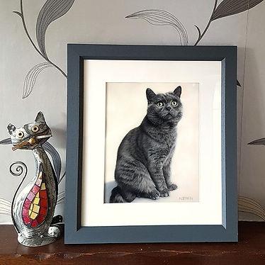 Framed cat portrait of Bradley the British Short Haired Cat. Hand drawn by pastel portrait artist Naomi Jenkin.