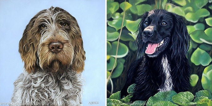 Dog portraits drawn in pastels by international pet portrait artist Naomi Jenkin.