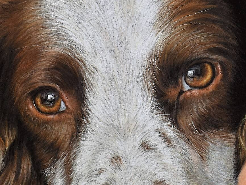 A close up of Charlie's portrait.