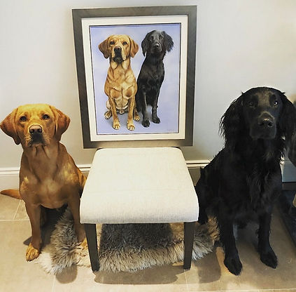 Dog portrait of fox red labrador and black flat-coated retriever. Drawn by Naomi Jenkin Art.